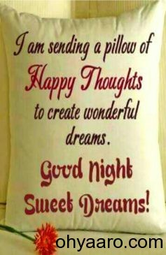 Good Night Wishes Status