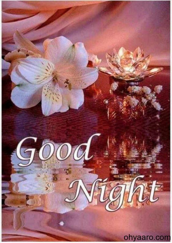 Good Night Flowers Image