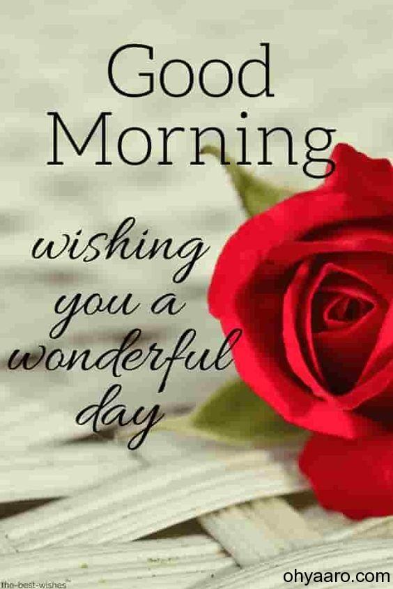 Good Morning Flowers Wishes image