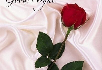 Good Night Images For Love – Good Night Flowers