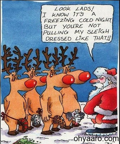 Funny Card Christmas Pic