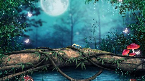 Forest Background For WhatsApp – Download Forest Wallpaper